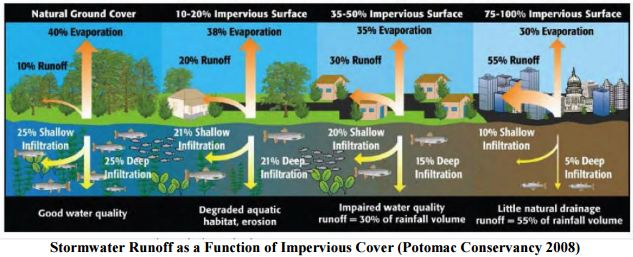 Stormwater Runoff Graphic
